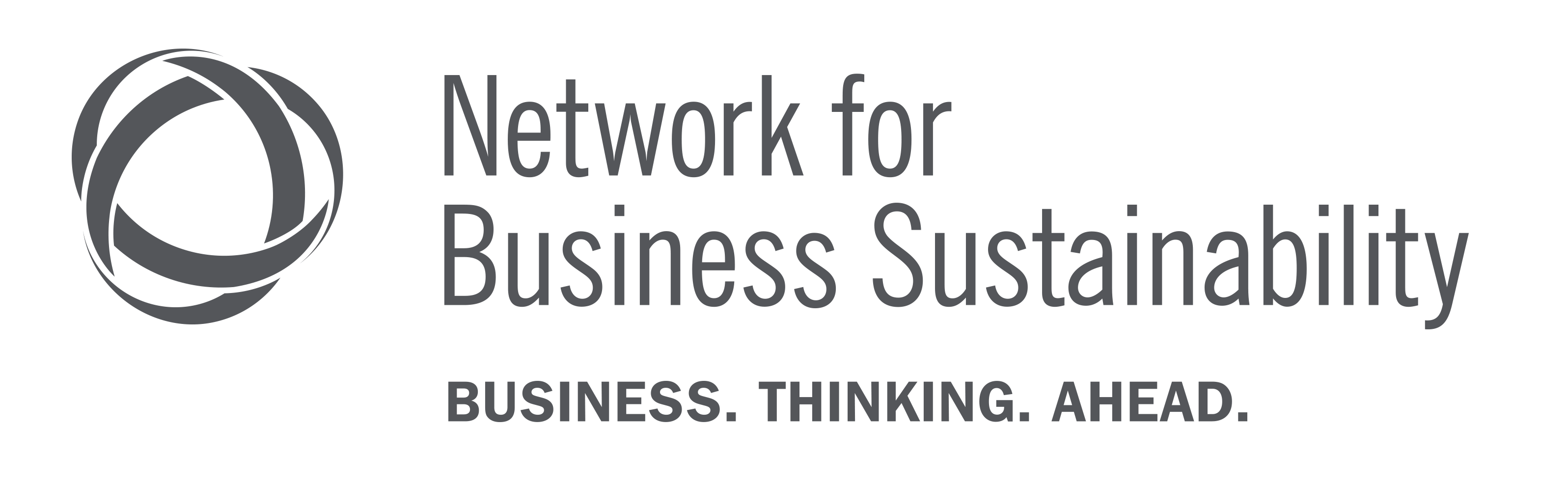 Network for Business Sustainability, Ivey Business School